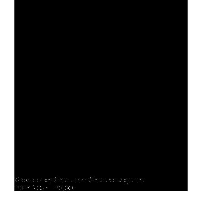 noun_Library_1660556